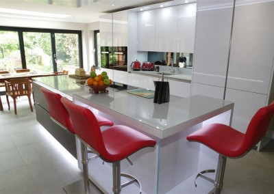 Polar White Kitchen