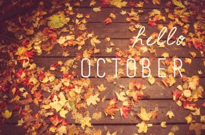 Autumn is here! New season, new kitchen. Book an appointment with PTC Kitchens today!